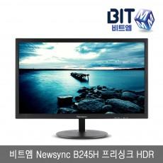 비트엠 Newsync B245H 프리싱크 HDR