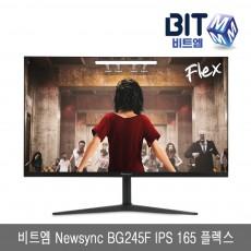 비트엠 Newsync BG245F IPS 165 플렉스