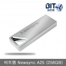 비트엠 Newsync A25 (256GB)